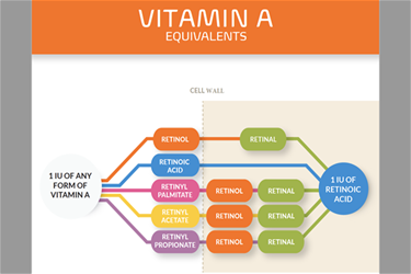How to answer hard Vitamin A questions. Infographic help.